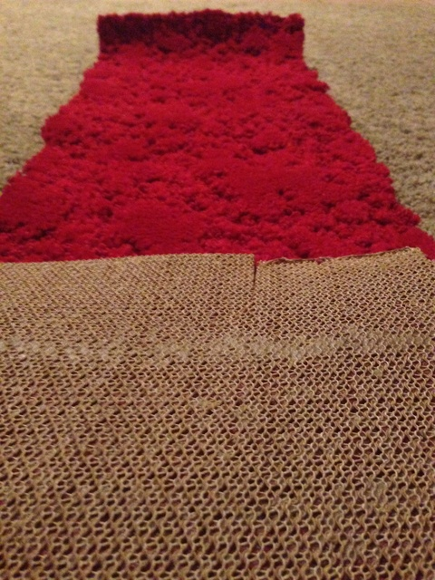An unused remnant of carpet that was installed in the theater in 1954
