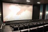 Patriot 12 Cinema & GS