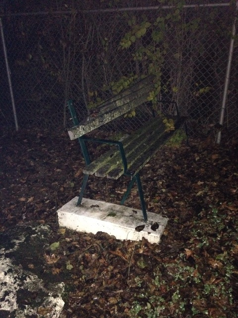 Bench from drive in October 2014