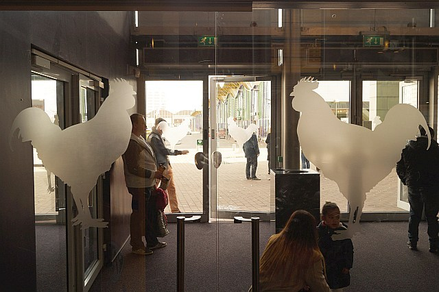 Glass doors with cock logo