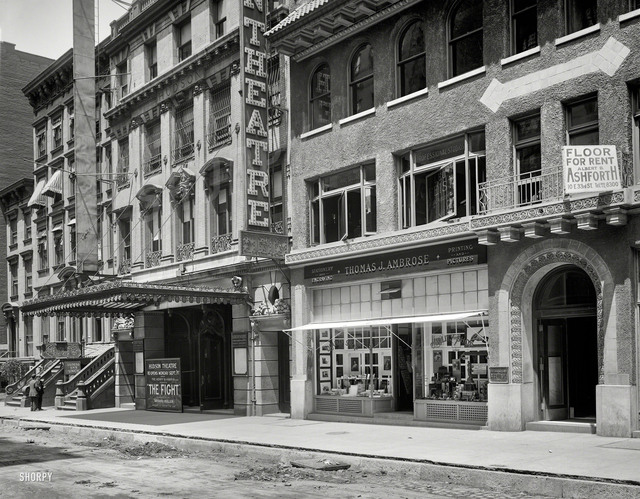 Quality Shop and Hudson Theatre