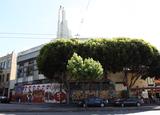 Pagoda Theatre, San Francisco, CA