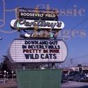 AMC Loews Roosevelt Field 8