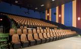 Elk Grove Auditorium
