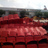 Forum 6 Cinema