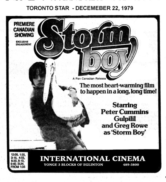 "TORONTO STAR AD FOR ""STORM BOY"" - INTERNATIONAL CINEMA"