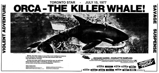 "TORONTO STAR AD FOR ""ORCA: THE KILLER WHALE"" TOWNE AND COUNTRYE AND OTHER THEATRES"