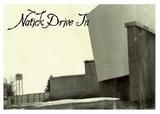 Natick Drive-In