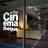 The Cinematheque