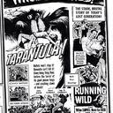 """Tarantula"" Comes To Town"