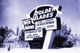 Golden Glades Twin Drive-In