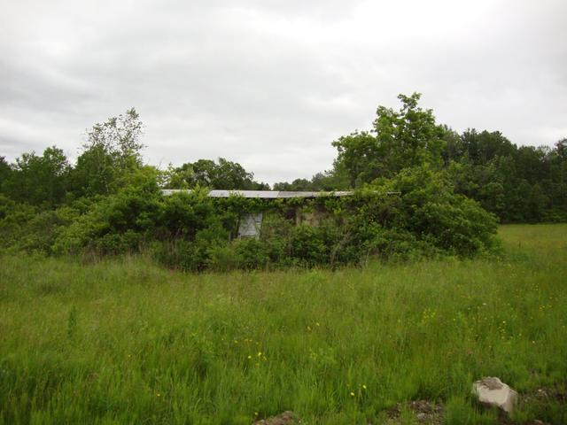 Vail Mills Drive-In