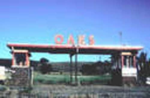 Oaks Drive-In