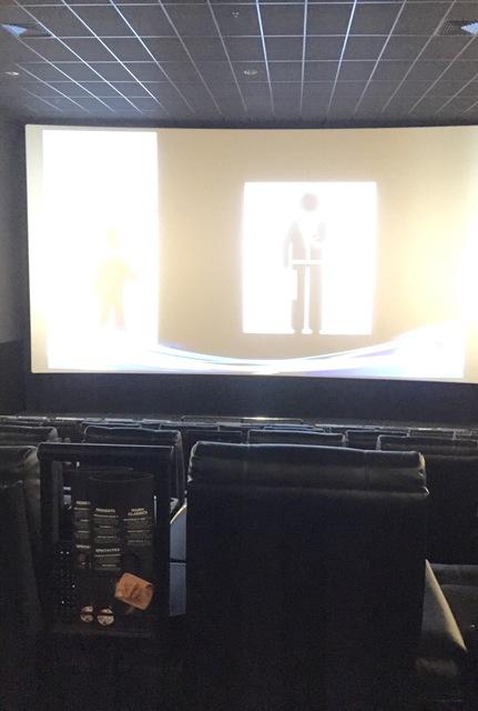 VIP auditorium 3