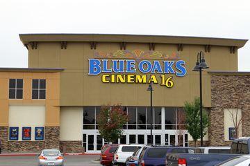 Blue Oaks 16