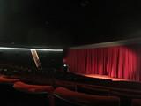 Savoy Screen 1 (2017)
