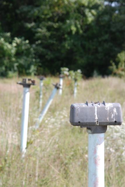 Speaker Poles
