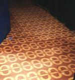 CIC carpet at the Plaza