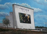 Panther Drive-In