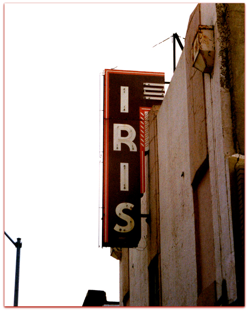 Iris© Terrell Texas