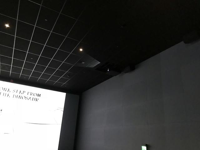ScreenX projector