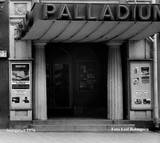 Palladium Bio