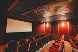 Onyx Theatre - Magic screening room