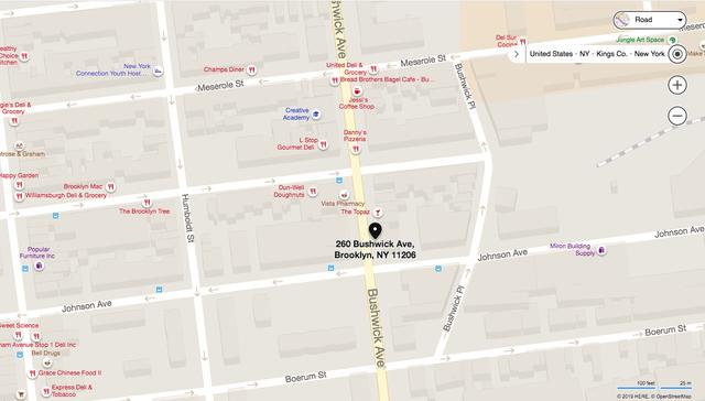 260 Bushwick Avenue, Brooklyn, NY 11206