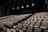 Goldsmith Family Cinema