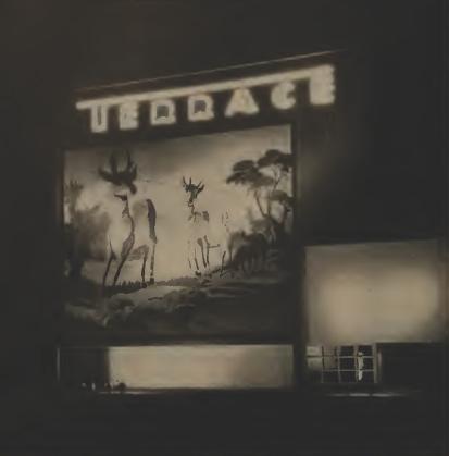 Terrace Drive-In