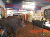 Lobby Balboa Theatre Old Rugs
