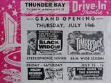 "[""Thunder Bay Drive-In""]"