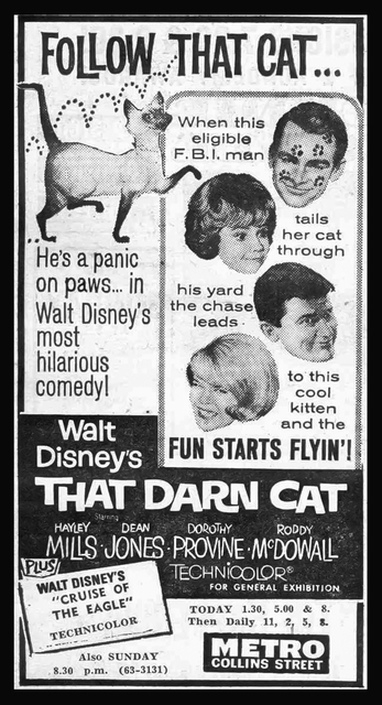 METRO THEATER  ( Later The Mayfair ) 167 Collins Street, Melbourne, Vic – Australia  - That Darn Cat 1965.