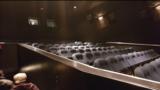 "[""Stadium seating""]"