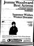 Summer Wishes, Winter Dreams