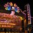 Irvine Spectrum 21 & IMAX