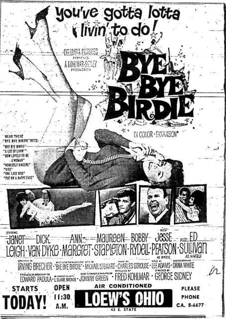 """""""Bye Bye Birdie"""""""