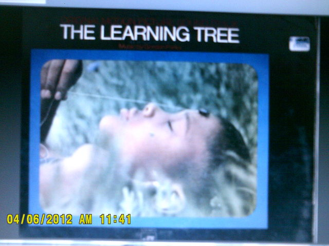 """The Learning Tree"""