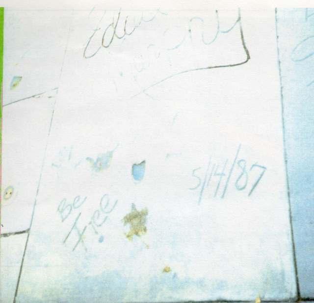 Eddie Murphy's Cement Prints
