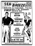 Azalea Auto Theatre