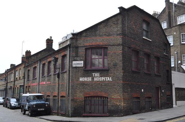 Horse Hospital