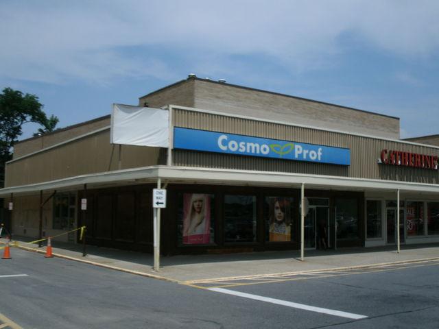 Hudson Plaza Cinema