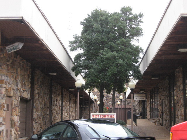 Courtyard at Balmoral Theatre