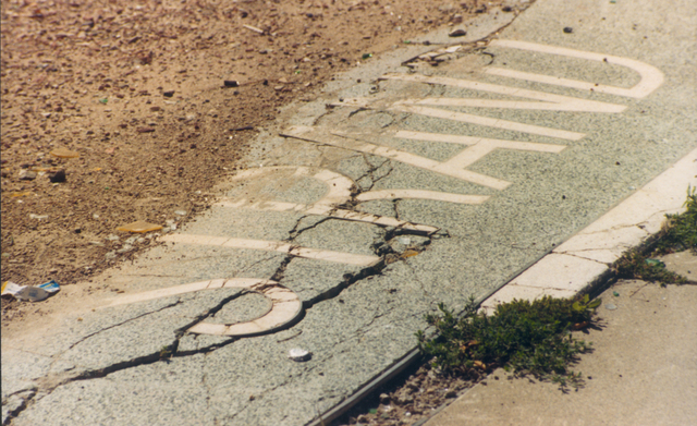 Strand remnants, August 1987