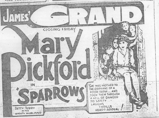 """""""Sparrows"""""""