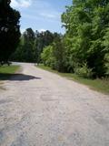 Belmont Drive-In