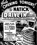 Natick Drive-In