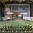 Lord Baltimore Theatre