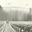 Merritt Cinema I & II