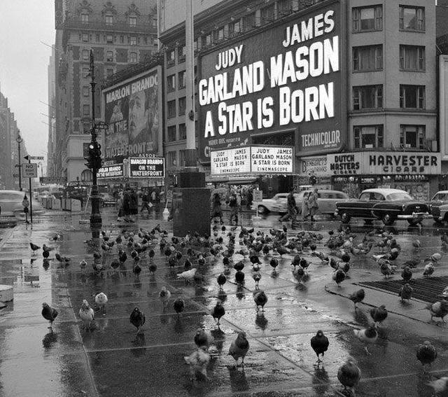 1954 photo, source unknown.